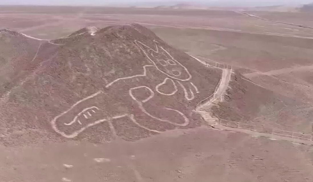 O pisica este noua geoglifa descoperita in Nazca